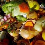 Proyecto Lignofood: alimentos funcionales a partir de residuos vegetales