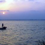 Las lagunas someras del Tancat de la Pipa actúan como depuradoras naturales de las aguas de l'Albufera
