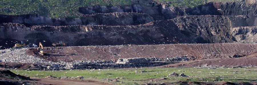 Cinco empresas optan a la gestión de los residuos de Lanzarote