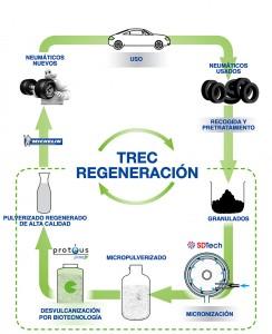 Proyecto TREC Regeneración
