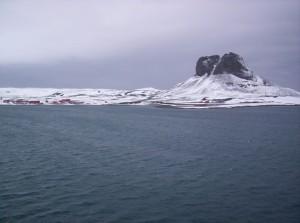 Una bacteria de la antártida desactiva metales contaminantes