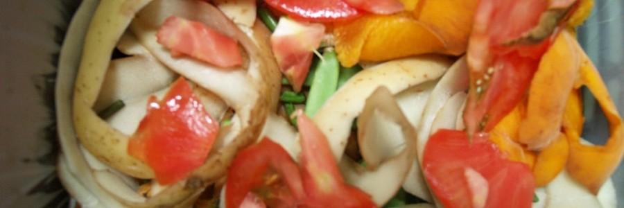 Jornadas sobre compostaje de biorresiduos