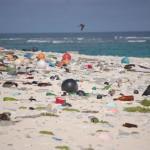 Abierto el plazo de votación del concurso escolar europeo de vídeos sobre basura marina