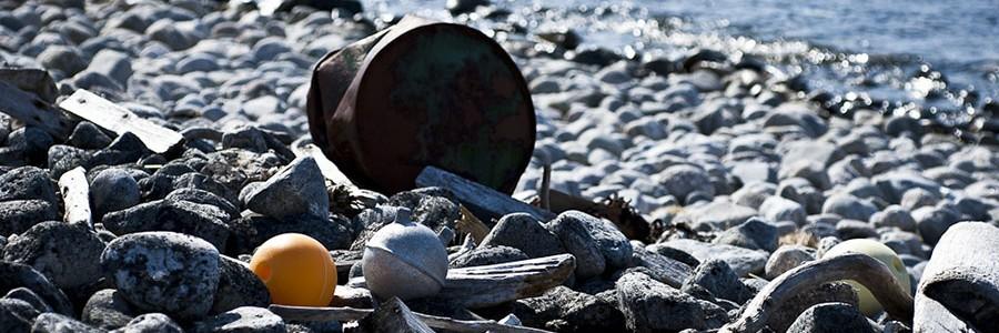 Cuatro estudiantes madrileñas ganan la edición española del concurso europeo de vídeos sobre basura marina