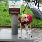 Un programa piloto aprovechará la orina de perro para mejorar la calidad del compost