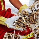 Una tesis doctoral recomienda el uso de combustibles alternativos en cementeras para reducir las emisiones