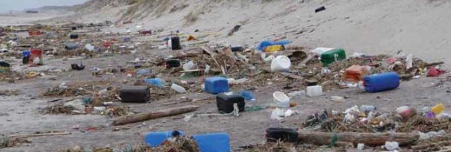 Marine LitterWatch, app para ayudar a abordar los desechos marinos