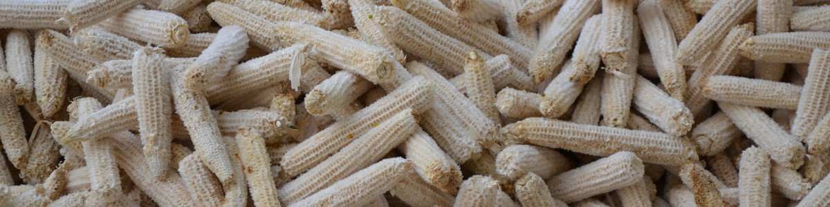 Residuos agroindustriales como potenciales regeneradores de suelos contaminados