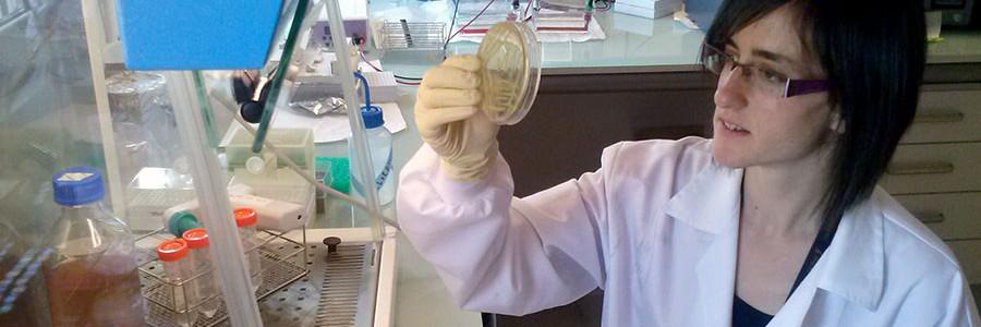 Nuevos biomarcadores para la detección precoz de contaminación metálica