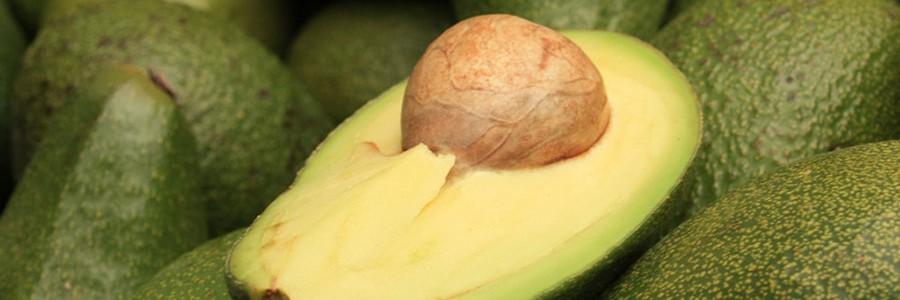 Un investigador mexicano obtiene bioplásticos de la semilla de aguacate