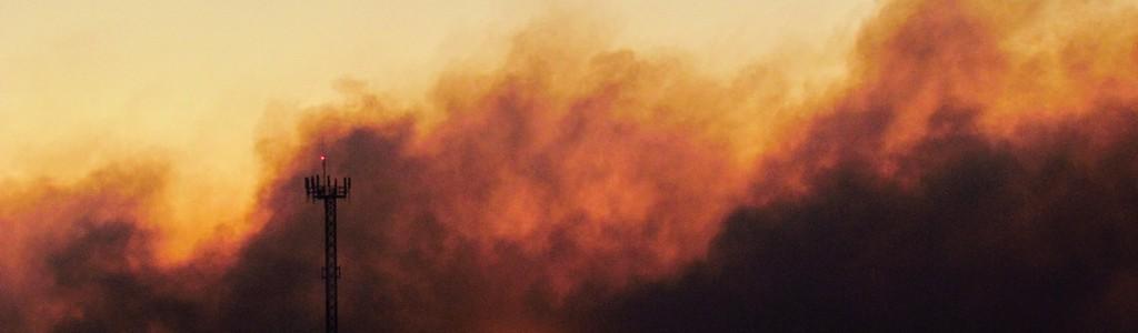 Extracción de biomasa para prevenir incendios forestales