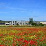 Declarada ilegal la planta de residuos tóxicos y peligrosos de Ólvega (Soria)