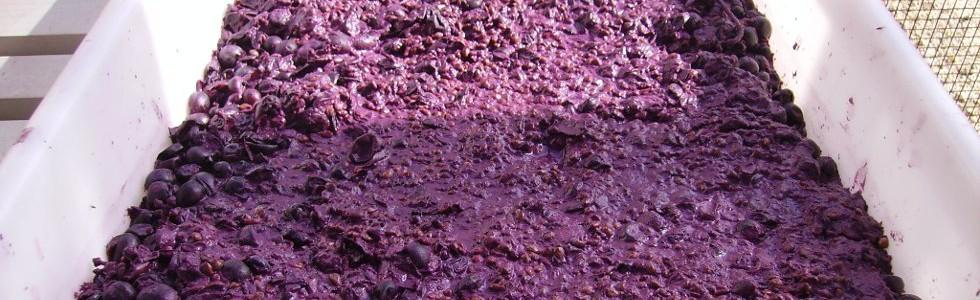 El uso de residuos como enmiendas orgánicas modifica la acción de los pesticidas
