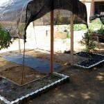Compost elaborado a partir de residuos para un huerto urbano social en Córdoba