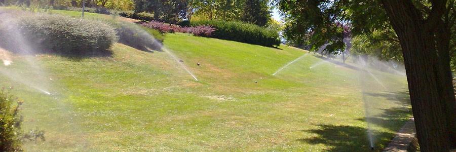2.000 hectáreas de zonas verdes se riegan con agua reciclada en la Comunidad de Madrid