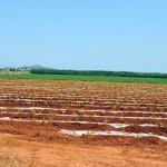 Murcia lidera un proyecto para descontaminar aguas residuales utilizando luz solar