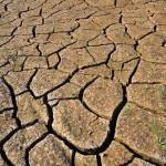 El calentamiento terrestre derivado del efecto invernadero. ¿Causas naturales y/o antropogénicas?