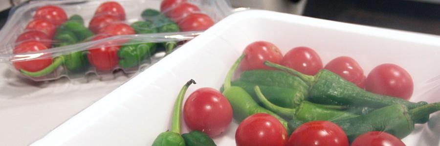 El proyecto BANUS avanza en el uso de materiales reciclados en envases de alimentos