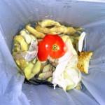 Alternativas para el aprovechamiento de la fracción orgánica de residuos urbanos