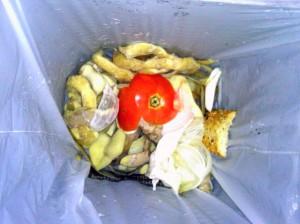 Fracción orgánica de residuos municipales