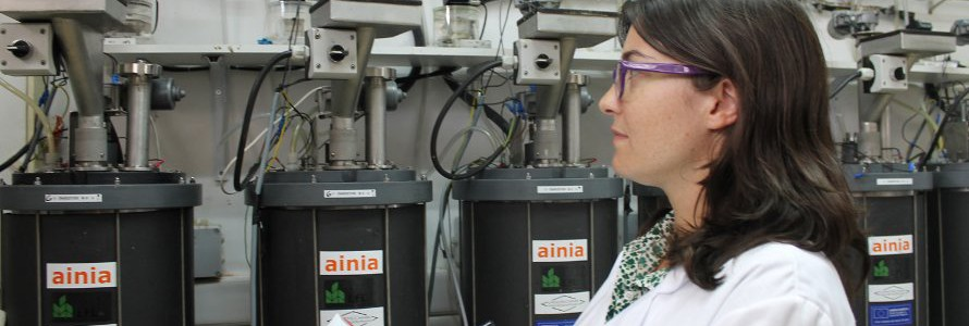 Consiguen producir biohidrógeno y biometano a partir de subproductos orgánicos