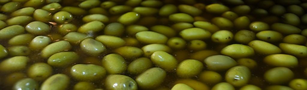 Investigadores de la UCA transforman los residuos de la aceituna de mesa en biogás