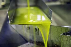 ALGATEC II: Biotecnología de microalgas para reciclar las aguas residuales de la producción de aceite de oliva