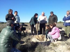 Reforestación en Lorca