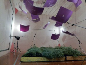 Proponen el uso de paredes vegetales como eficaz aislante acústico en edificios