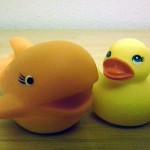 Ecologistas en Acción alerta sobre los tóxicos presentes en perfumes y juguetes
