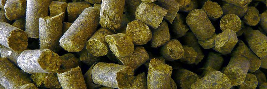 Una nueva planta de pellets tratará 25.000 toneladas de residuos forestales al año en Huelva
