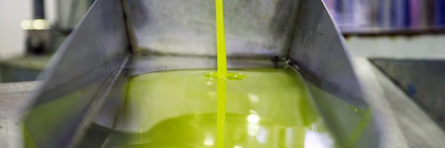 Proyecto europeo para calcular la huella de carbono del aceite de oliva