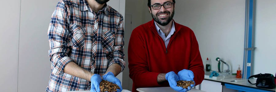 Entomotech ya exporta su tecnología de tratamiento de residuos agrícolas a varios países
