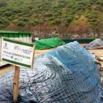 Las Palmas de Gran Canaria produce 2.000 m³ de composta partir de sus restos vegetales
