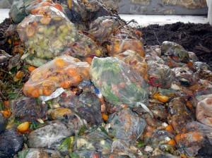 Investigan nuevas vías de valorización de residuos agrícolas e industriales
