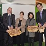 Iniciativa del Gobierno Vasco para apoyar el uso energético de biomasa forestal