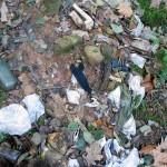 Aplicación de la metodología TRIAD de evaluación de riesgo a suelos contaminados