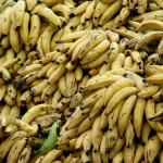 Valorización de residuos de la producción de plátano para fabricar cemento