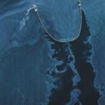 Microbios frente a las mareas negras