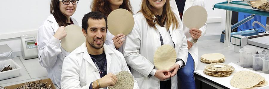 Obtienen celulosa a partir de algas mediante tecnologías limpias