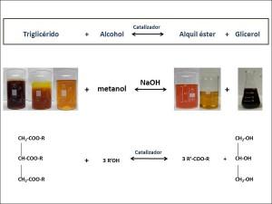 Los investigadores han producido biodiésel combinando hasta 13 mezclas distintas de aceites de palma, pescado y fritura