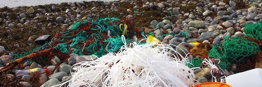 El proyecto MARLISCO propone medidas para reducir la basura marina
