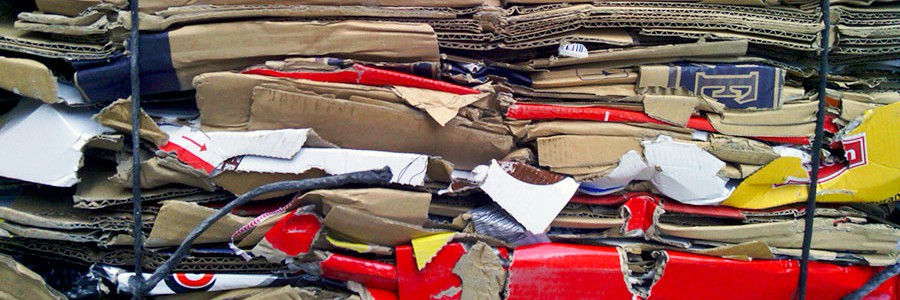 La industria del papel y la economía circular