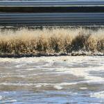 Proyecto para la valorización eficiente de aguas residuales de la industria alimentaria
