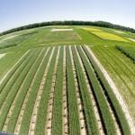 La UE reorienta su política sobre biocombustibles