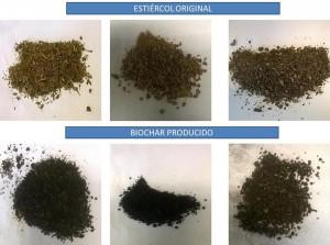 Investigadores de la UPM han obtenido un eficiente fertilizante a partir de estiércoles