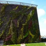 Paneles aislantes biodegradables a partir de residuos agrícolas
