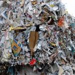 La industria papelera y forestal reclama más reciclaje y mejor clasificación de residuos