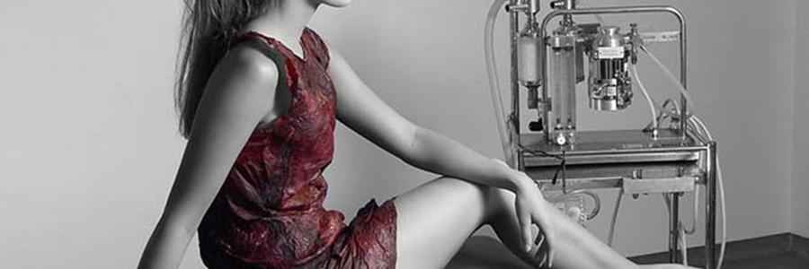 Aprovechamiento de residuos alimentarios para la creación de moda textil