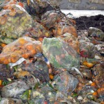 Si el desperdicio alimentario fuera un país, sería el tercer emisor de gases invernadero